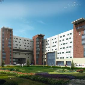 The American Cancer Institute - India